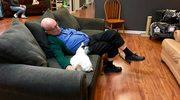 Wolontariusz schroniska, którego zadaniem jest... spanie z kotami