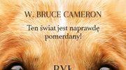 Woof! Bestsellerowa powieść o psie dla wszystkich ludzi