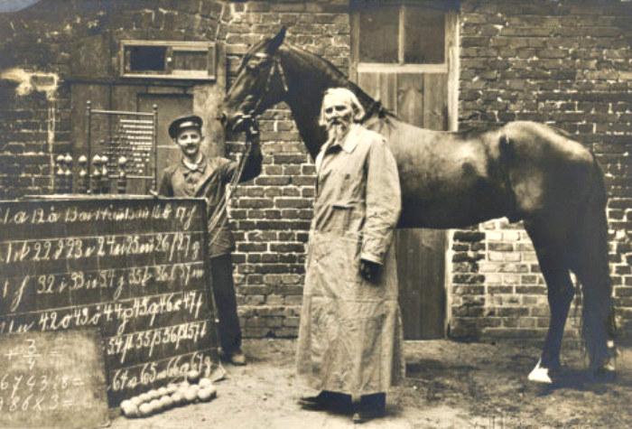"""""""Wpadka"""" nie sprawiła, że Von Osten skończył z publicznymi pokazami umiejętności swojego konia /materiały prasowe"""