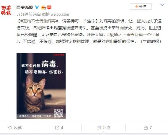 Wpis na serwisie Weibo apelujący o pomoc zwierzętom, które pozostały same w opuszczonych domach /Weibo /domena publiczna