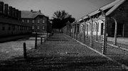 """Wpis """"polskie obozy zagłady"""" nie narusza dobra byłej więźniarki"""