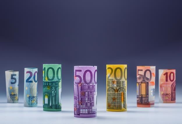 Wprowadzenie wspólnej waluty podniosło poziom życia w Niemczech /©123RF/PICSEL