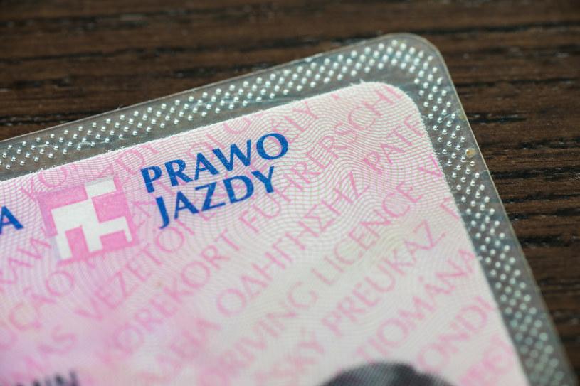 Wraca dyskusja na temat odbierania prawa jazdy /Arkadiusz Ziółek /East News