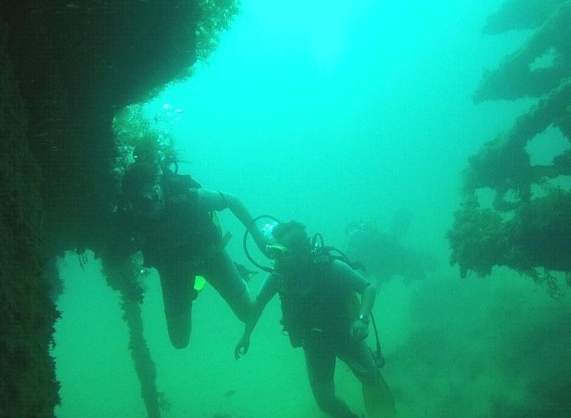 """Wrak HMS """"Maori"""" to naprawdę urokliwe miejsce /archiwum prywatne"""
