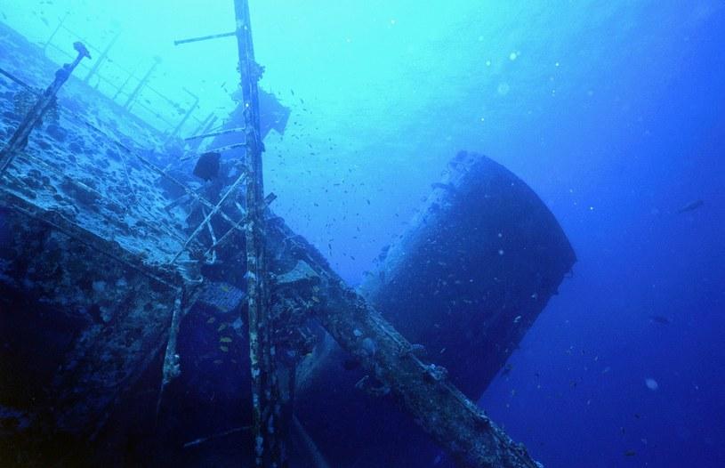 Wrak okrętu, zdjęcie ilustracyjne /BARTLOMIEJ PACZOSKI /Reporter