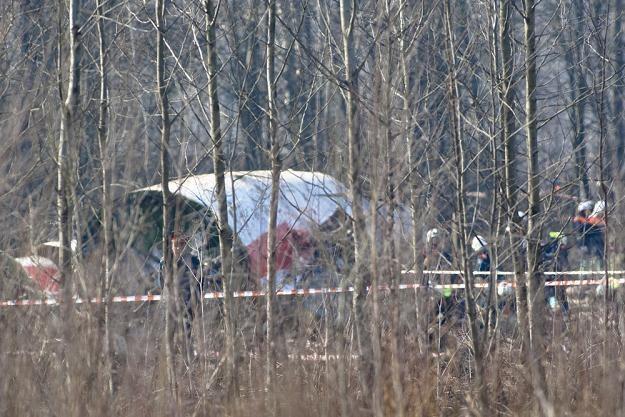 Wrak samolotu prezydenckiego, fot. Rigamonti /East News