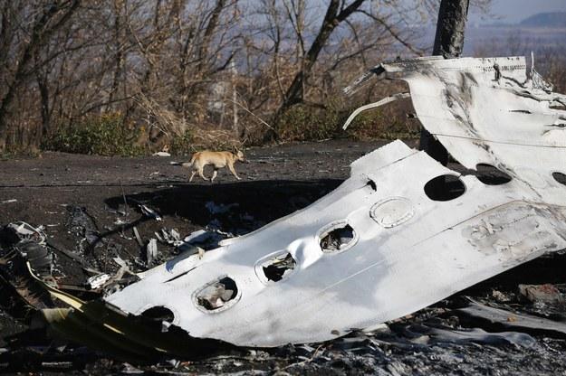 Wrak zestrzelonego boeinga /Pochuyev Mikhail    /PAP/EPA