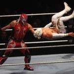 Wrestling - rozwiązanie konkursu