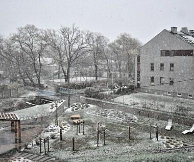 Wrocław: Sypnęło śniegiem