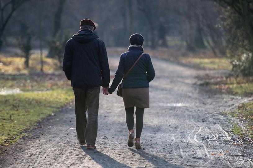 Wrocławianie korzystają z pięknej pogody spacerując w Parku Szczytnickim /Maciej Kulczyński (PAP) /PAP