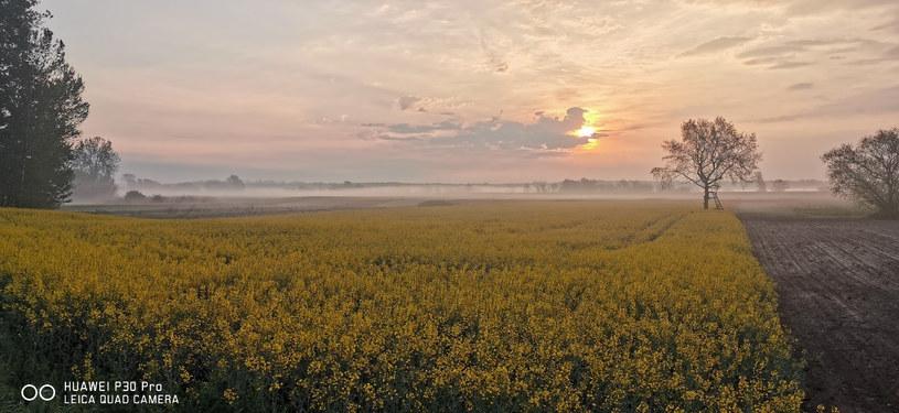 Wschodzące słońce i poranna mgła stanowią idealne połączenie do zdjęć krajobrazowych /INTERIA.PL