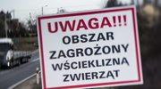 Wścieklizna w Cieszynie. Wyznaczono obszar zagrożenia