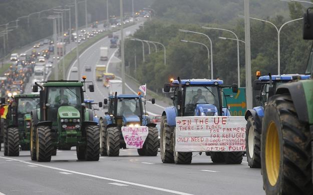 Wściekłość rolników sięga zenitu, Komisja Europejska zamierza sięgnąć po środki nadzwyczajne /PAP