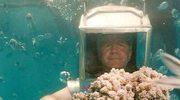 Wspaniała przygoda na... dnie oceanu