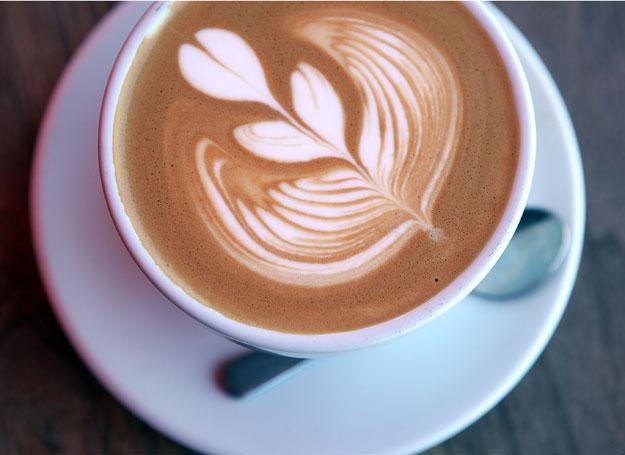 Współcześnie kawę pije się na setki sposobów - każdy miłośnik ma z pewnością swój ulubiony /Getty Images/Flash Press Media