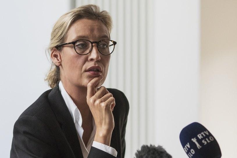 """Współprzewodnicząca frakcji parlamentarnej AfD Alice Weidel napisała na Twitterze: """"W najnowszym sondażu #Insa osiągamy nowy rekordowy wynik"""" / Hermann Bredehorst /East News"""