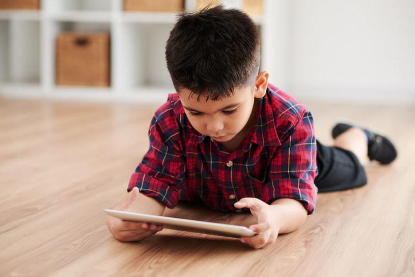 Wśród dostępnych tytułów znajdują się niemal wszystkie lektury obowiązkowe dla szkoły podstawowej i liceum. /123RF/PICSEL