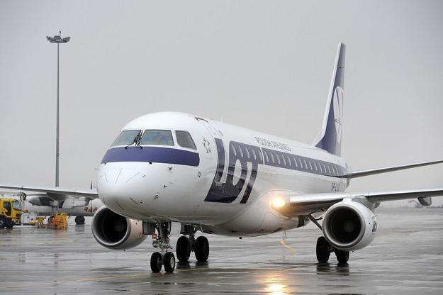 Wśród służb lotniskowych USA panuje przekonanie, że polski pasażer pije, fot. Wojciech Stróżyk /Reporter