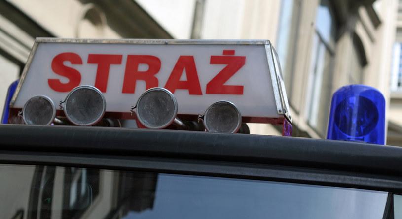 Wstępnie ustalono, że przyczyną pożaru jest podpalenie /RMF24.pl