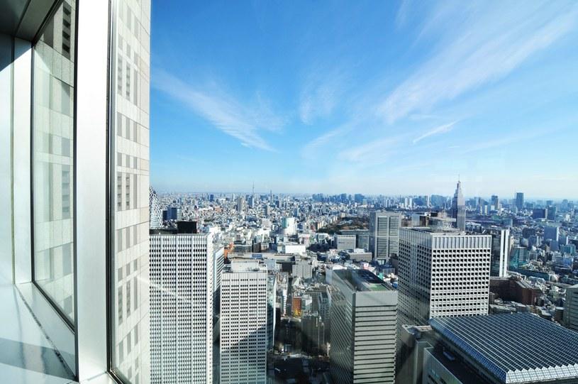 Wstrząsy odczuwalne były w Tokio /zdj. ilustracyjne /123RF/PICSEL