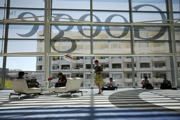Wszyscy chcą pracować dla Google'a /AFP