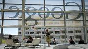 Wszyscy chcą pracować dla Google'a