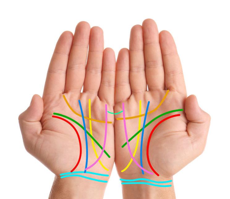 Wszystkie linie na dłoniach /©123RF/PICSEL