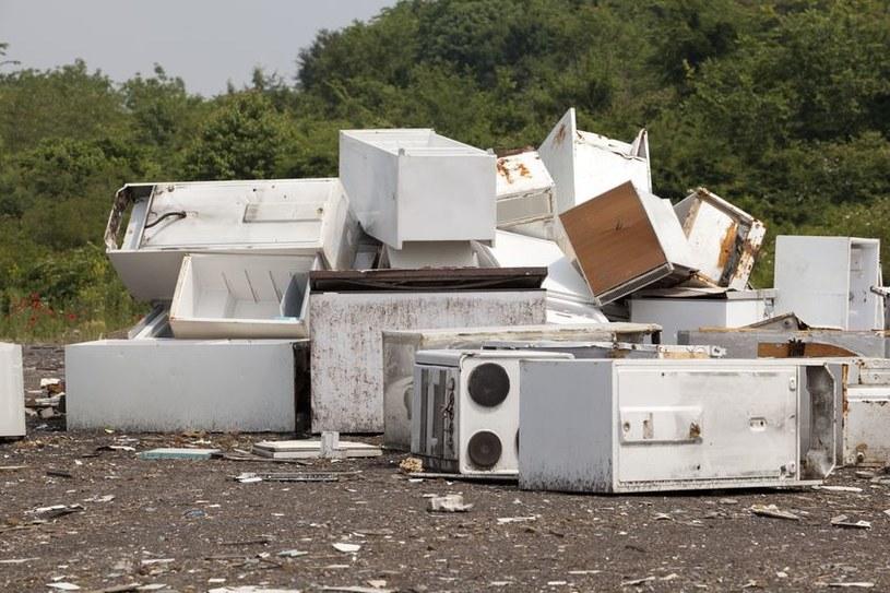 Wszystkie zużyte urządzenia na prąd lub na baterie, m.in. telewizory, pralki, lodówki czy telefony komórkowe nie mogą być usuwane do zwykłego pojemnika na śmieci /123RF/PICSEL