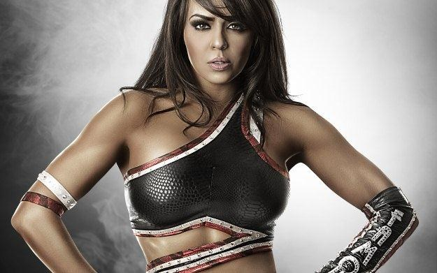 WWE '12 - motyw graficzny /Informacja prasowa