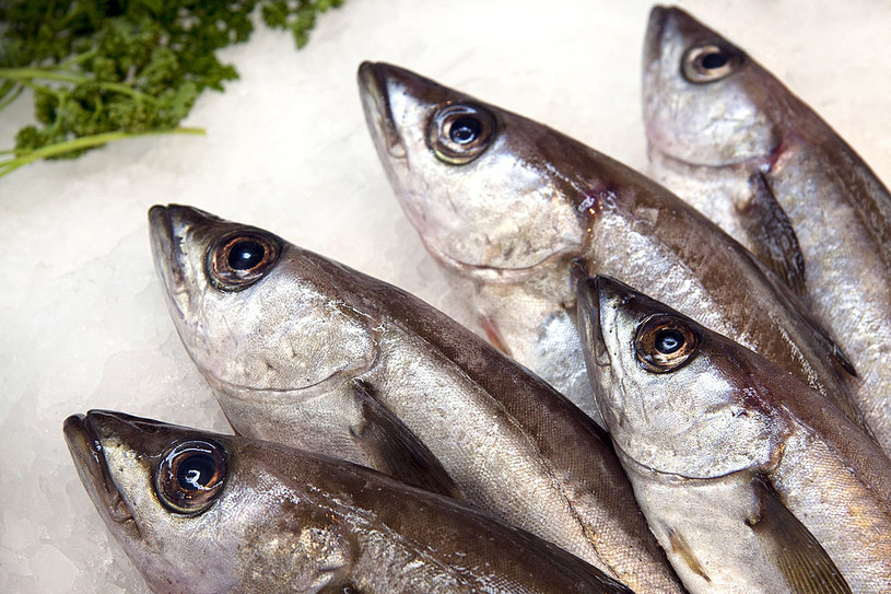 Wybierając rybę warto znać jej wartość odżywczą /123RF/PICSEL