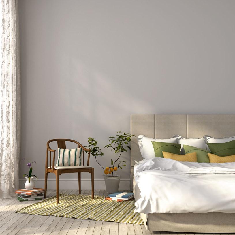 Wybór roślin do sypialni ma wpływ na dobry sen /123RF/PICSEL