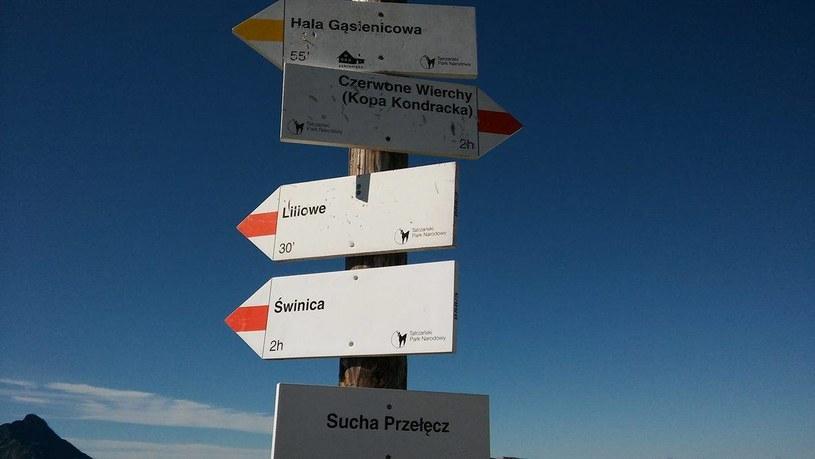 Wybór szlaku musi być dostosowany do naszych możliwości /Dariusz Jaroń /INTERIA.PL