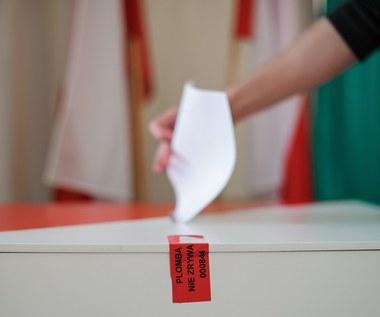 Wybory 2015. Jak podejmujemy decyzje wyborcze?