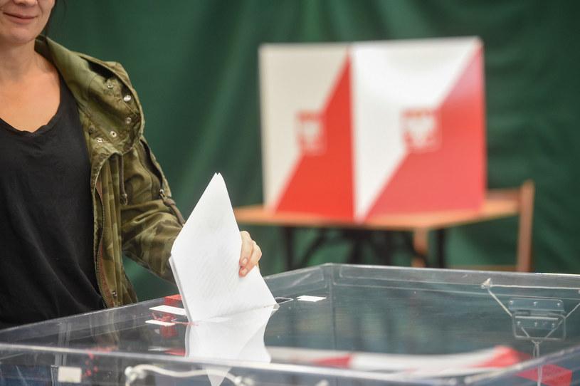 Wybory, zdj. ilustracyjne /Zbyszek Kaczmarek /Reporter