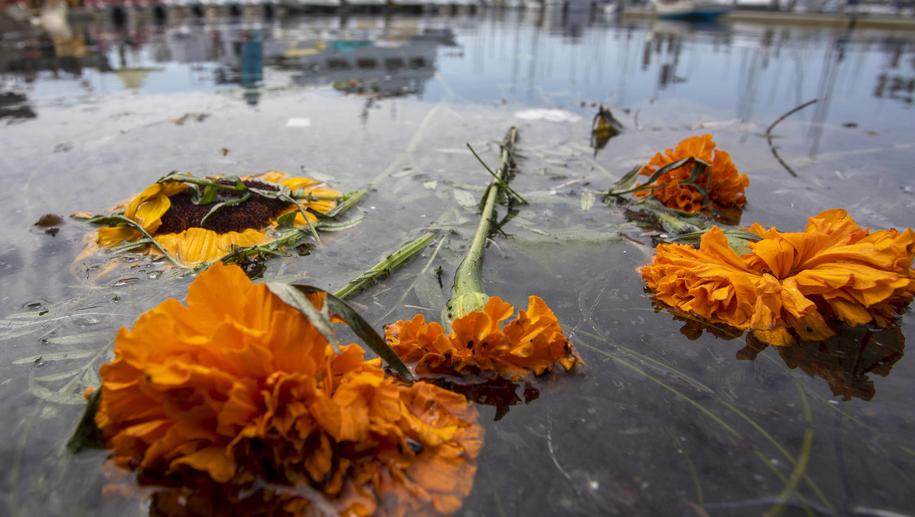 Wybrzeże, gdzie doszło do pożaru statku /David McNew /PAP/EPA