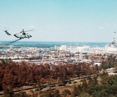 Wybuch w Czarnobylu naruszył równowagę środowiska