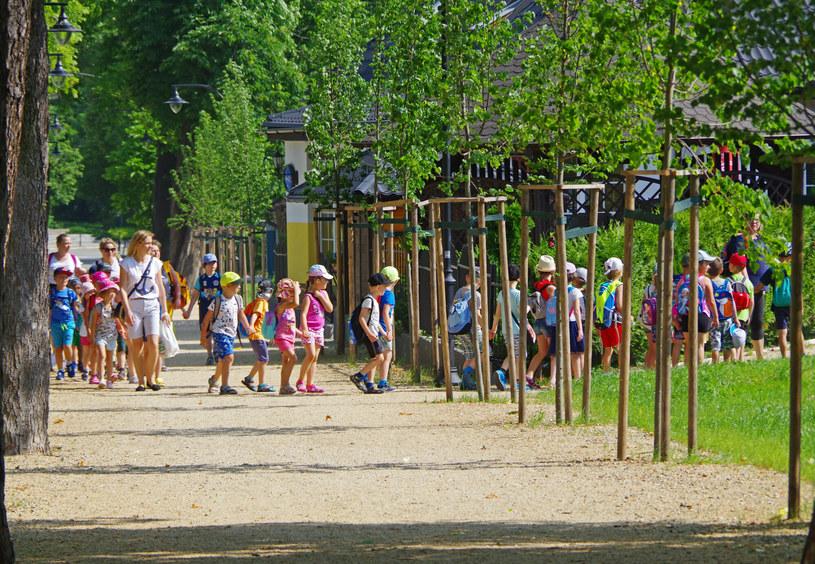 Wychowawca ma określoną liczbę dzieci w grupie, którą się zajmuje /Marek BAZAK/East News /East News