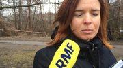 Wycinka drzew w centrum Pruszkowa: Mieszkankę Pruszkowa obudził dźwięk piły
