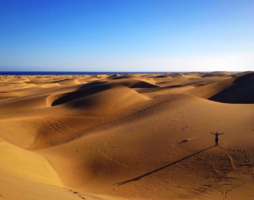Wydmy Maspalomas na Gran Canaria /©123RF/PICSEL