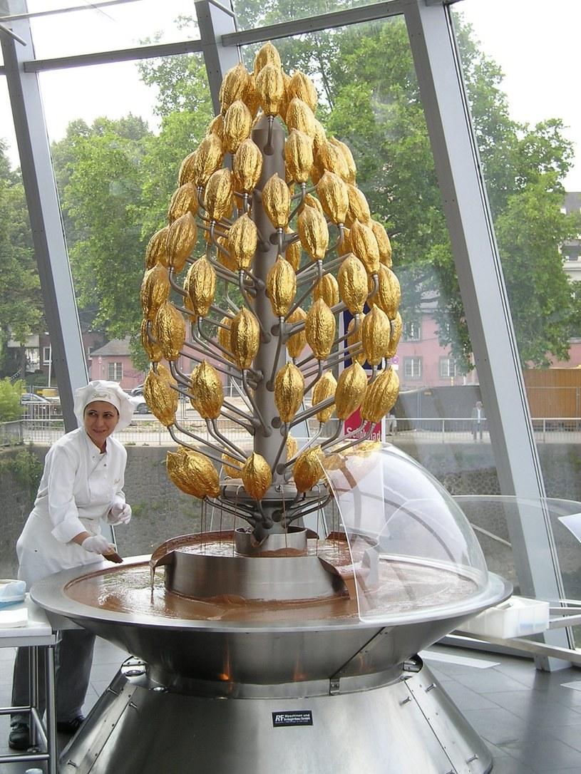 Wyjątkową atrakcją Kolonii jest tutejsze Muzeum Czekolady z prawdziwym kakaowcem i czekoladowymi fontannami / © NRW Tourismus e.V. / Norbert Angermann /materiały promocyjne