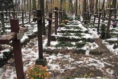 Wyjątkowy cmentarz leśny w Laskach