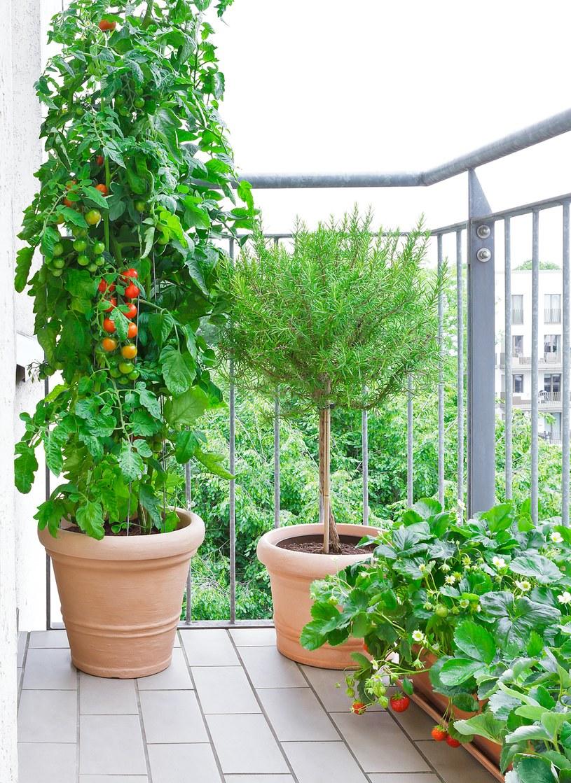 Wykorzzystaj przestrzeń na balkonie /123RF/PICSEL