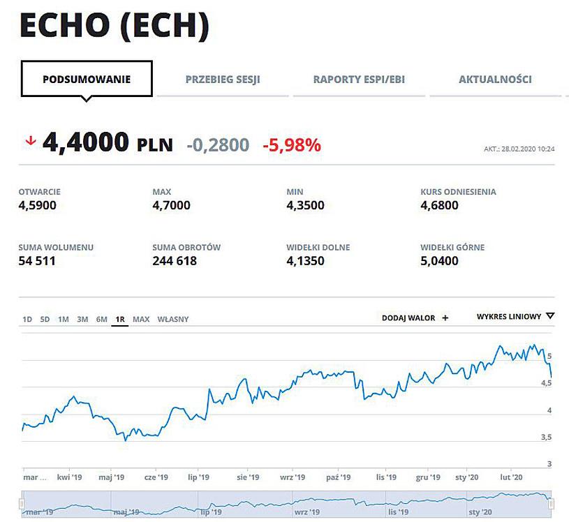 Wykres kursu Echa w ostatnim roku /123RF/PICSEL