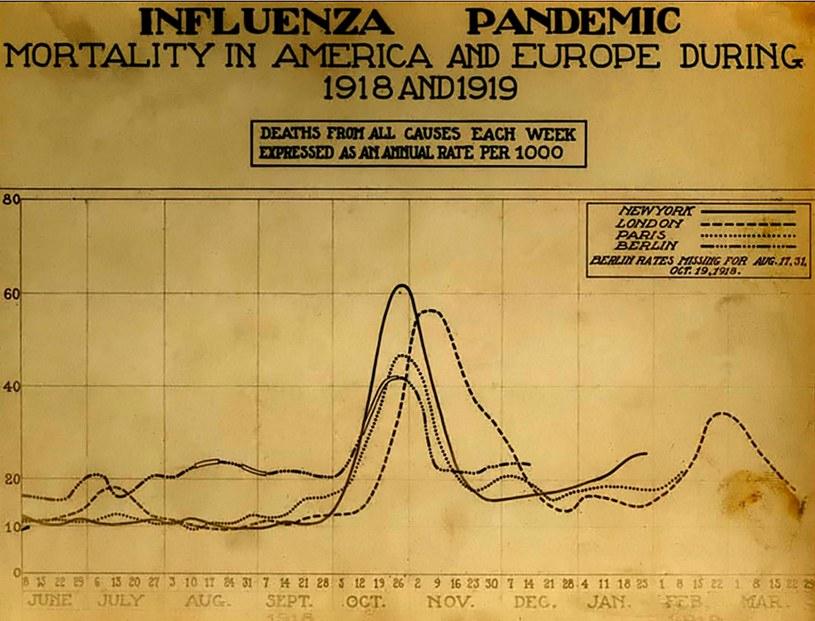 Wykres ukazujący śmiertelność wywołany pandemią hiszpanki w latach 1918-19 w Europie i Ameryce /Wikimedia Commons /domena publiczna