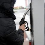 Wyliczono średnie ceny paliw na okres świąt. Gdzie jest najdrożej?