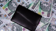 Wynagrodzenia w branży ubezpieczeniowej w 2013 roku