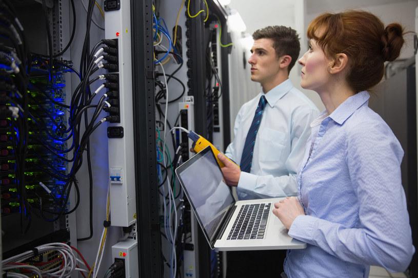 Wynajem pracowników coraz popularniejszy w sektorze IT /123RF/PICSEL