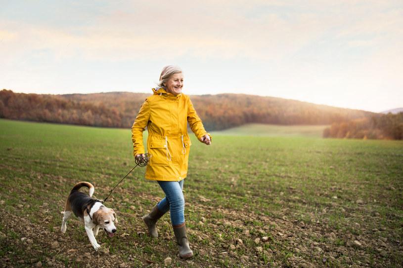 Wyniki badań nie kłamią - pies korzystnie wpływa na zdrowie /123RF/PICSEL