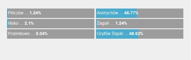 Wyniki głosowania /RMF FM