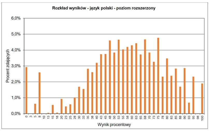 Wyniki matury z języka polskiego - poziom rozszerzony w ubiegłym roku /CKE